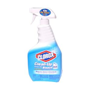 Clorox Clean-Up Spray
